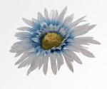 Produktová fotografie - Astra bílo modrá čelní pohled